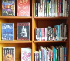 Librarybooks-CindyFazzi