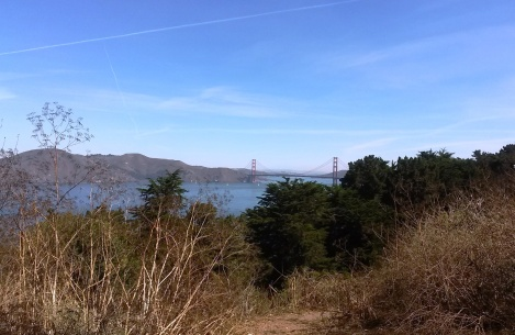 GoldenGateBridge-CindyFazziPic