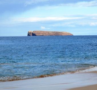 The poor adverb is like a remote island deemed useless by most editors. (Kamaole Beach, Maui, 2014; photo by Cindy Fazzi)