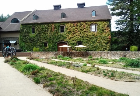 The Hess Collection Winery, Mount Vedeer, Napa Valley (Photo by Cindy Fazzi).