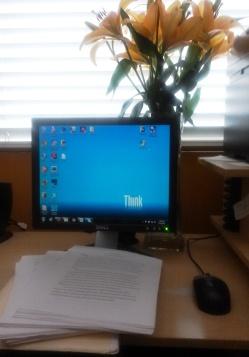 ManuscriptComputer-CindyFazziPic